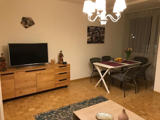 3.5 rooms (2BR) apartment - Badisher BH - Basel