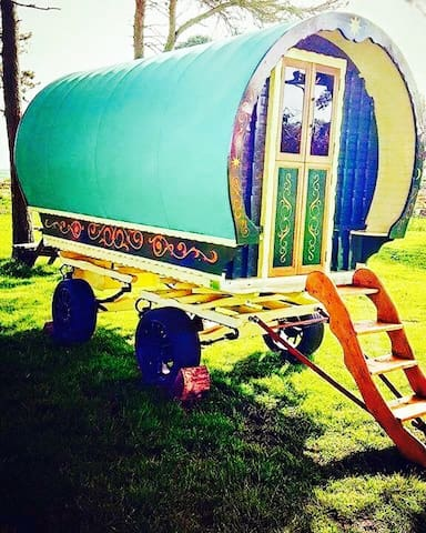 Gypsy Caravan @ North Shire - Liverton