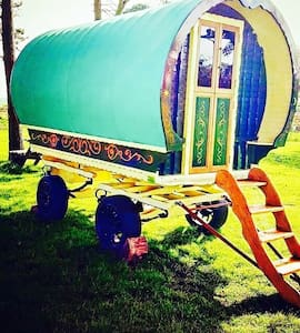 Gypsy Caravan @ North Shire - Liverton  - Inny