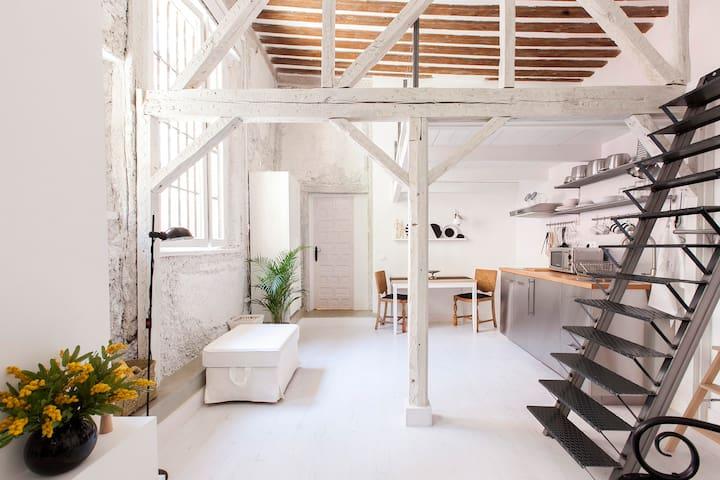 NEW Remodel Madrid Sol downtown duplex!! ( M )