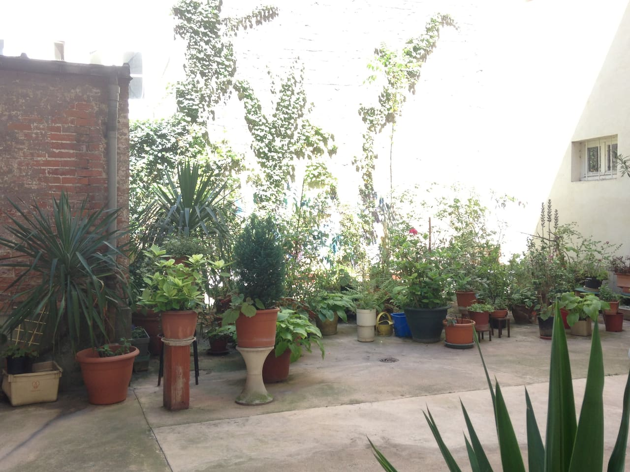 A lovely little courtyard