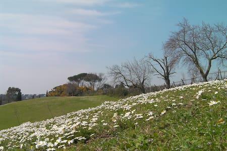 CasaleDelTiglio-CameraLaBanditaccia - Cerveteri - Penzion (B&B)