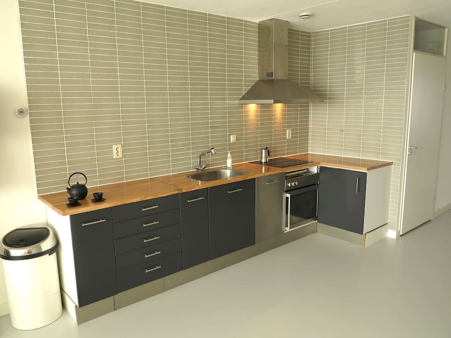 Modern kitchen with dishwasher,  induction cooking, and a large surface area.