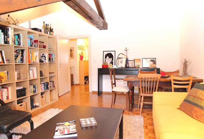 Chalet style flat in central Geneva - Geneva - Apartment