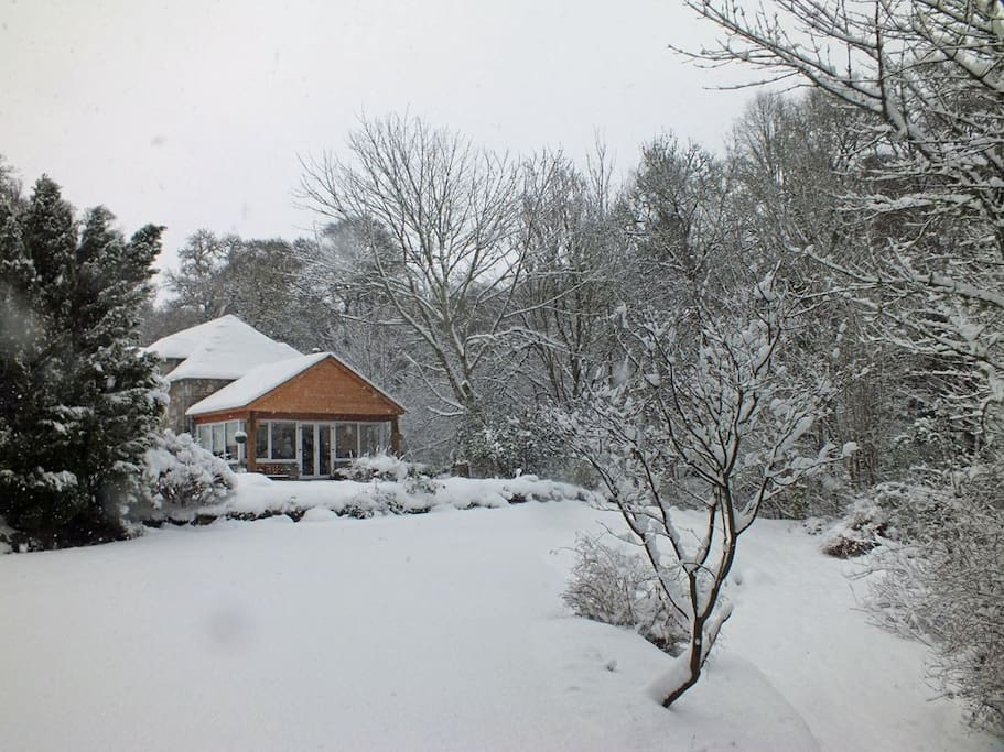 Winters scene looking from the bottom of the garden