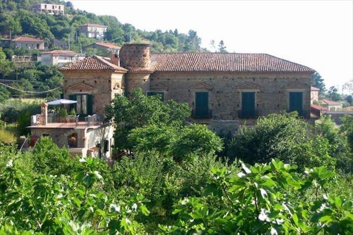 Vicino Acciaroli, in palazzo baronale fine '700 - Serramezzana - Apartment