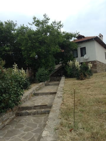 House in Emona - Emona - House