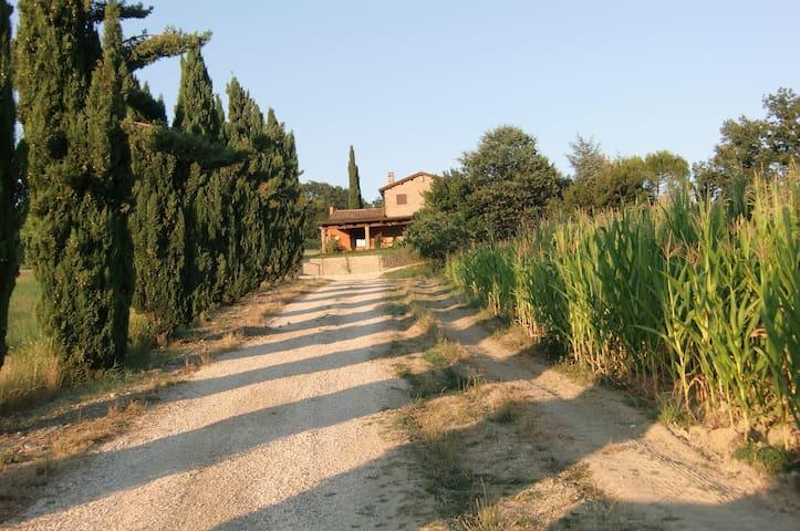 casale del 1700 - cesena - Villa