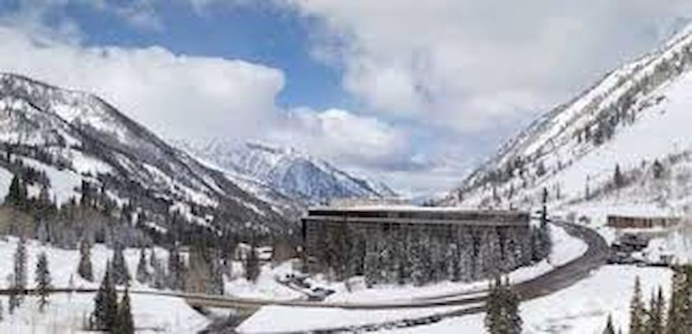 Snowbird Timeshare at The Cliff Lodge
