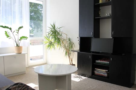 Cozy apartment in the city center - Druskininkai