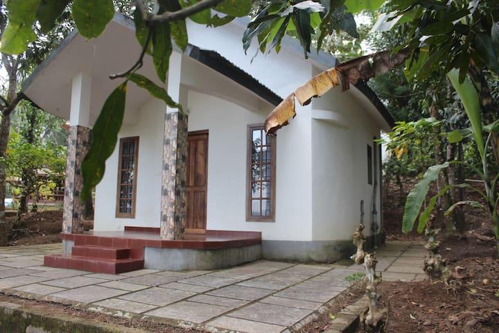 Wayal Wayanad Honey moon villa amidst  green