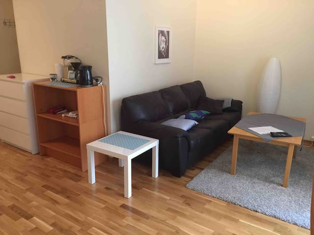 Studio apartment close to Grieghallen with parking