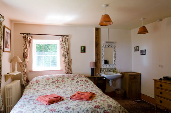 High Bullen Farm Sparrowhawk sea view comfy bed - Devon - Bed & Breakfast