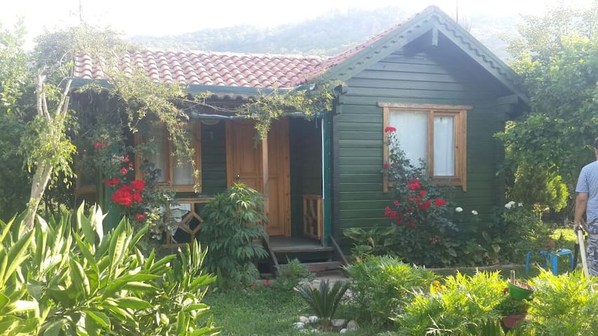 Turkuaz Bungalows Çıralı - Çıralı - Bed & Breakfast
