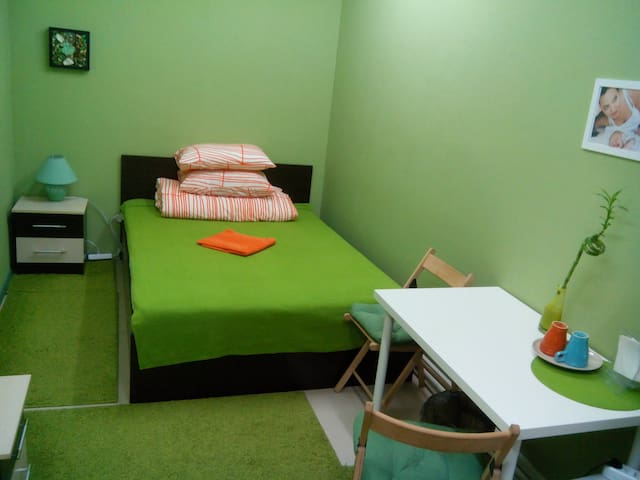 double room in the city center - Novosibirsk - Bed & Breakfast