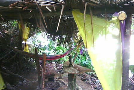 Rainforest Hammocks