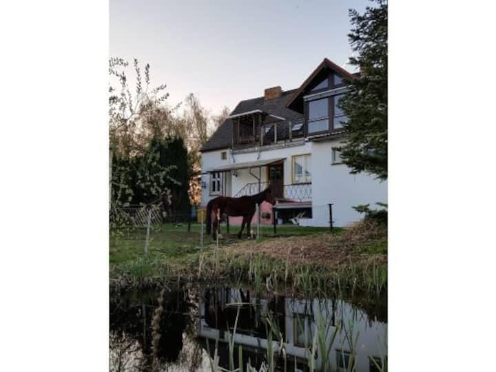 """Ferienwohnung im Spreewald """"schöne Aussicht"""""""