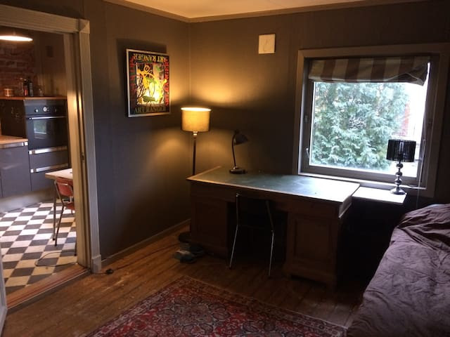 Komfortabel leilighet Sarpsborg sentrum - Sarpsborg - Apartment