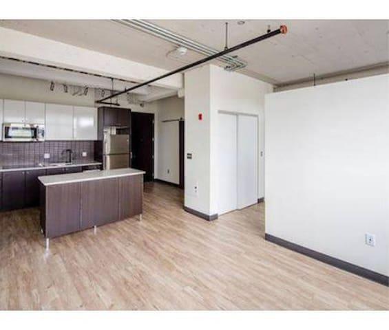 Cambridge Cozy Modern Loft Apartments For Rent In