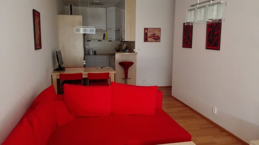 Nice and clean apartment with balcony and garage - Praha - Byt