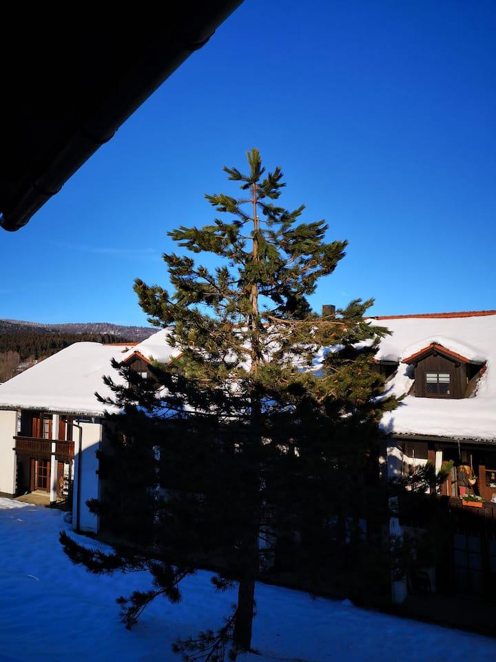 Ferienapartment  Bayerischer  Wald mit Terrasse 2