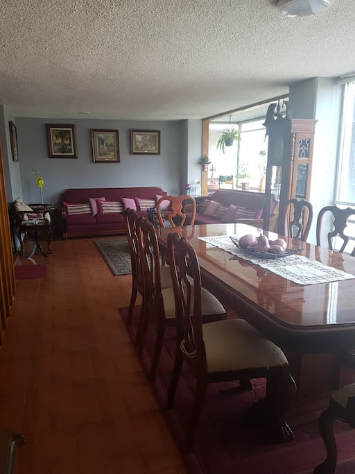 Sala y comedor (Living and dining room)