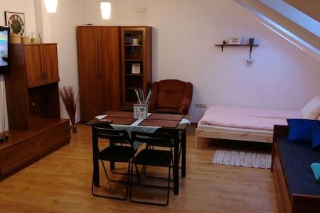 Przyjazny apartament w Rzeszowie - Rzeszów - Lejlighed