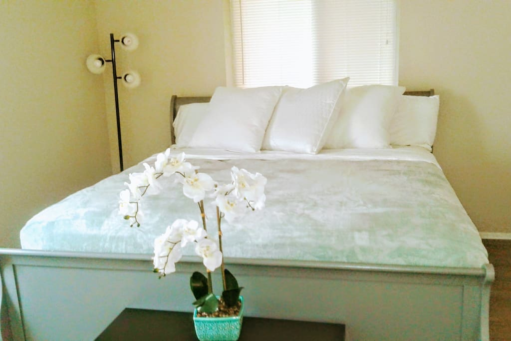 Master bedroom (premium quality king size bed).
