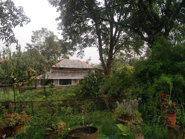 Peccan Cottage in scenic tea plantations of Darang