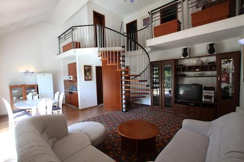 Penthouse Vitae - Rummelig lejlighed i Olimje