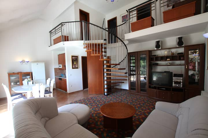 Spacious duplex apartment in Olimje