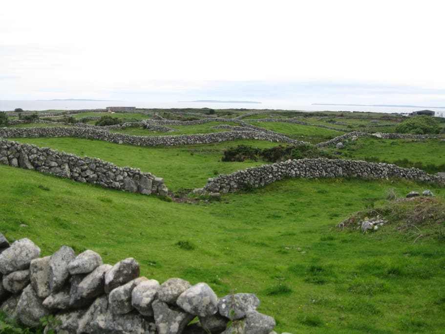 stone walls of Connemara