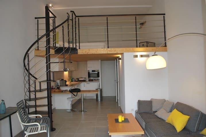 appart de charme vue et situation - Beaumes-de-Venise - Appartement