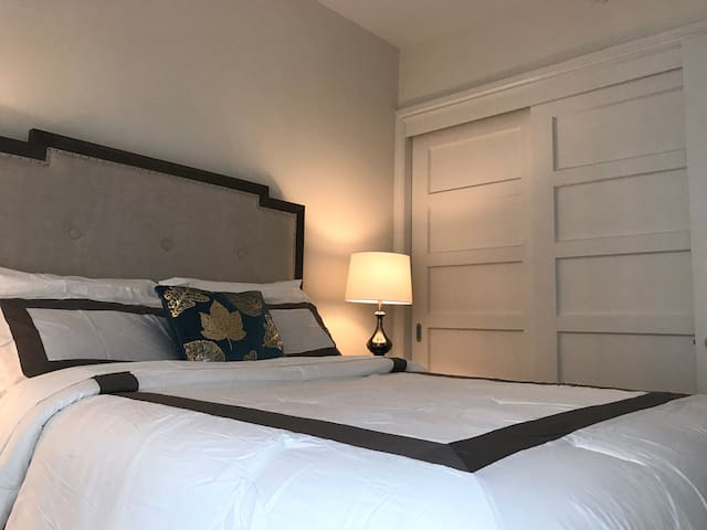 Luxury Suite - in the heart of Down Town Toronto
