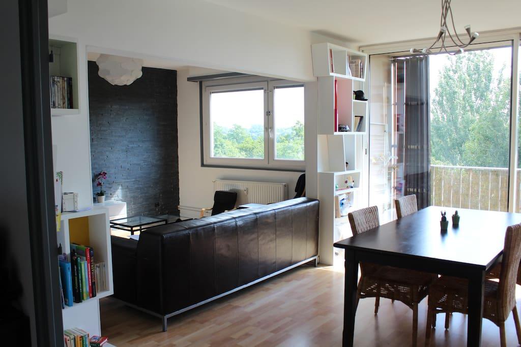 appartement familial vue cath drale appartements louer strasbourg alsace france. Black Bedroom Furniture Sets. Home Design Ideas