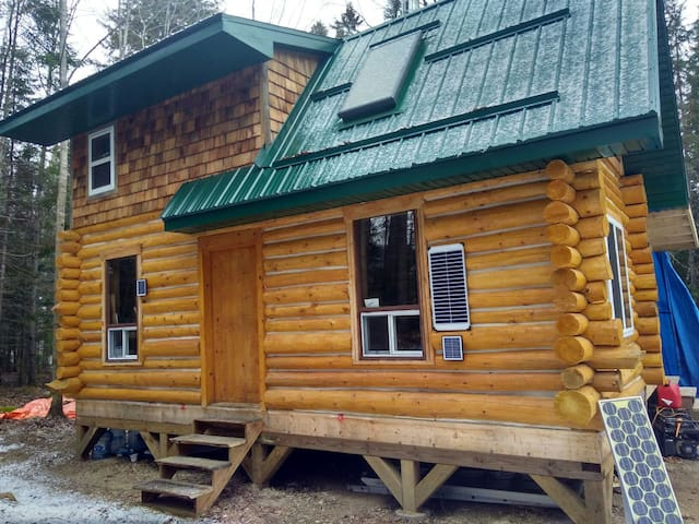 Whitney Woods Algonquin- wilderness living in town