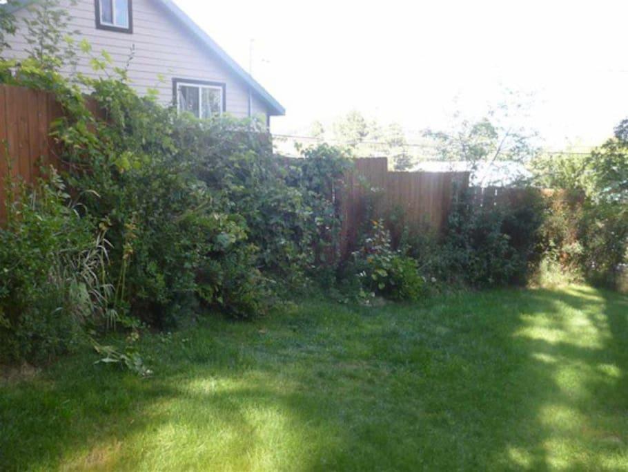 Enclosed private yard.