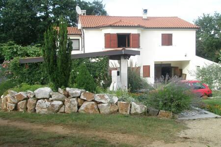 Apartment Caterina 2