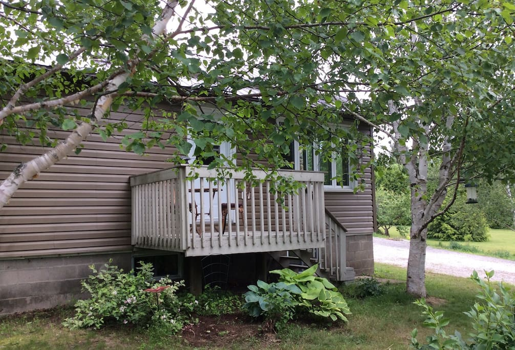 Dog Friendly Bed And Breakfast Ontario