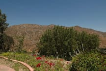 View overlooking the mountainside.