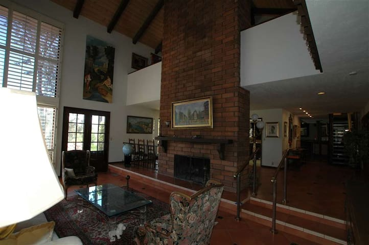 Living room with fireplace 3