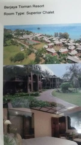Affordable Hotel/Resort Room(s). - Berjaya Tioman Beach Resort