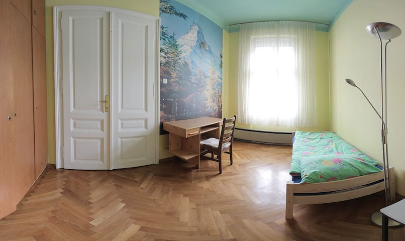Spacious rooms in the best location - Ljubljana