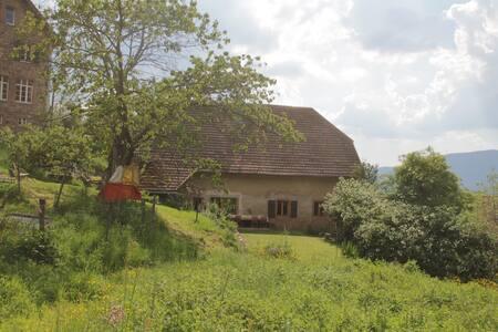 Maison Vosgienne et Jardin familial