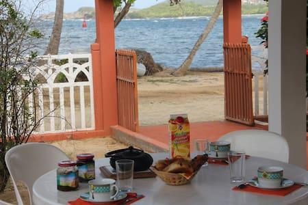 Les Pieds dans l'Eau - La Trinité - Villa