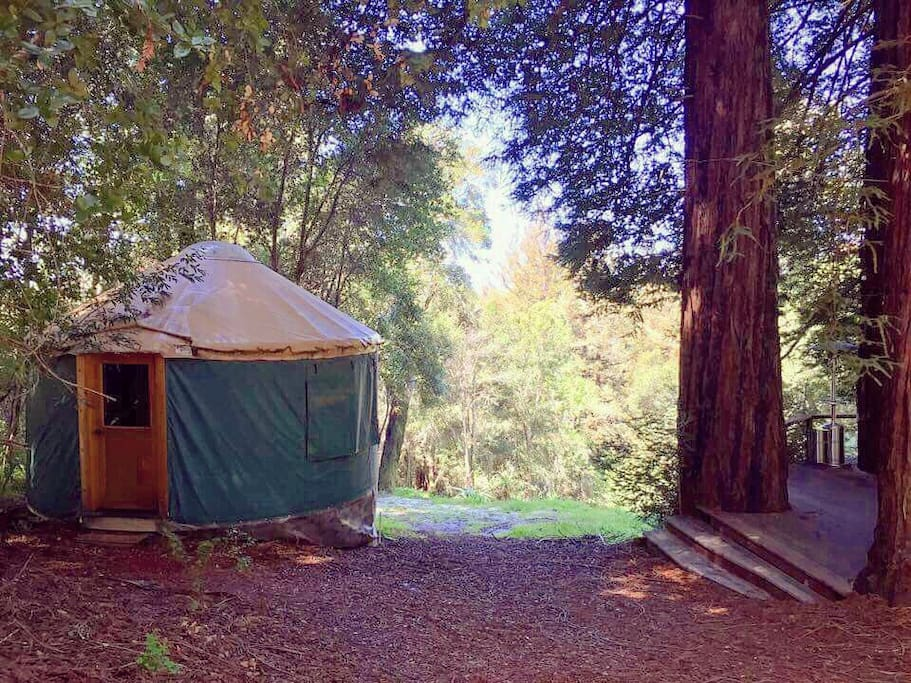 View of Yurt and Redwood Deck