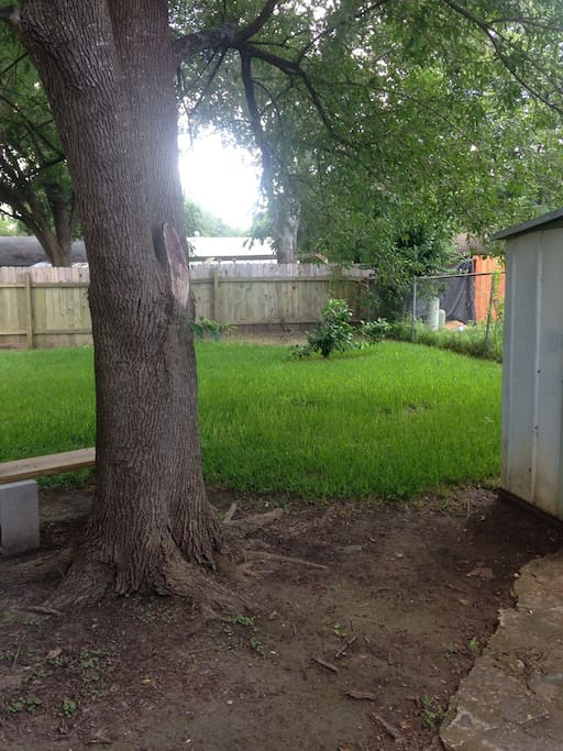 Right half of the backyard