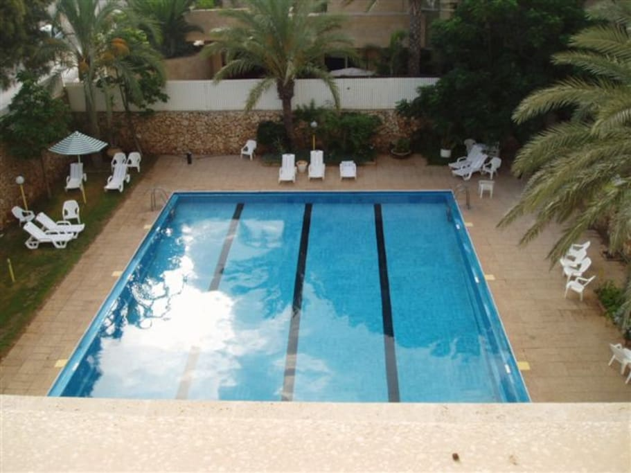View of the Pool from the Kitchen