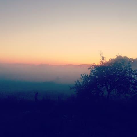 Hälsing Ärla. Magic serenity - Ärla - House