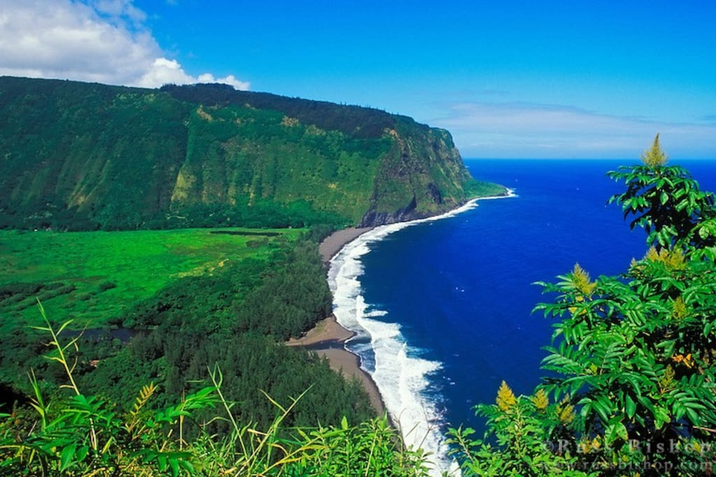 Waipio Lookout over Hawaii's longest black sand beach. Walk less than 1/2 mile to the lookout or walk/drive another mile down a steep road to the beach.